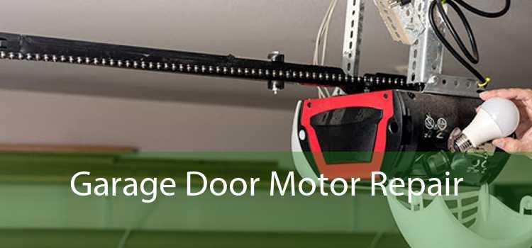 Garage Door Motor Repair